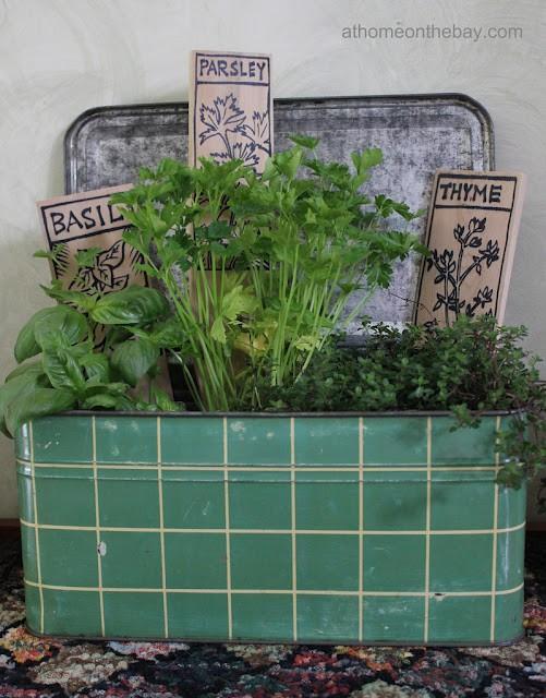 horta jardim na varanda:Criar uma horta-jardim numa varanda com sombra