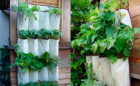 passo a passo horta jardim na varanda 5 hortas verticais horta jardim na varanda. Black Bedroom Furniture Sets. Home Design Ideas