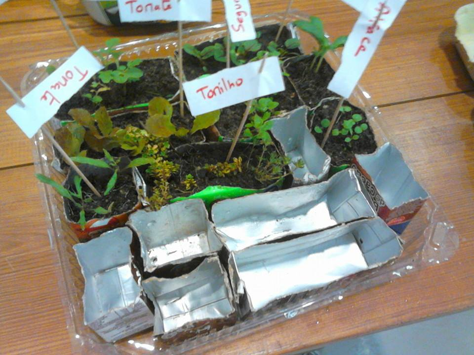 horta jardim na varanda: Horta-Jardim na varanda: (7) Sementeiras