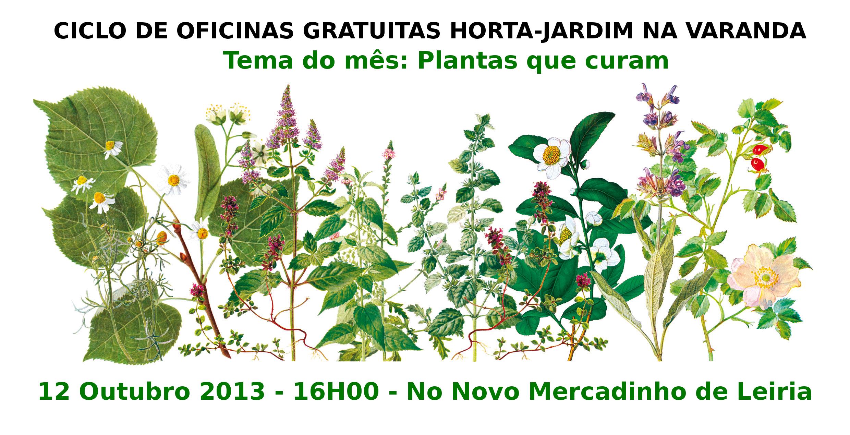 horta jardim na varanda: Oficinas Horta-Jardim na varanda – Outubro