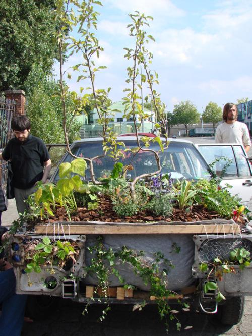 horta jardim na varanda:Hortas-Jardim urbanas