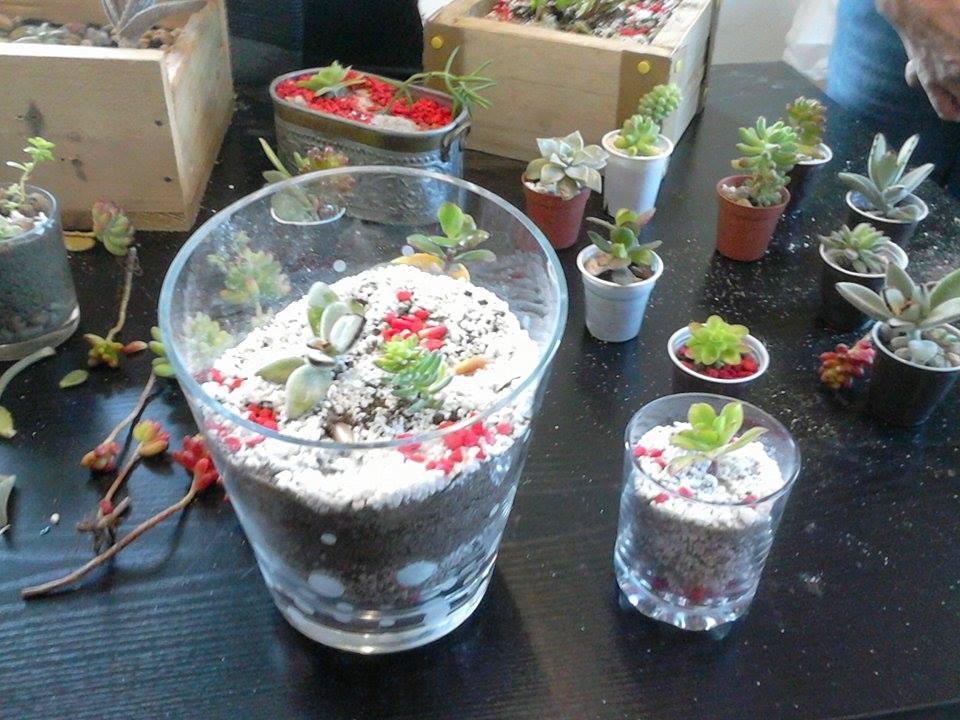 mini jardim de vidro : mini jardim de vidro: de 2 cm de pedrinhas. No exterior, o vaso deve ser sempre furado para